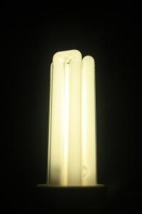 longlife-light-bulb-2-1331264-m